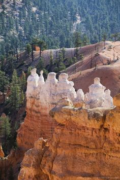 Image detail for -Bryce Canyon National Park, Utah, United States of America, North America