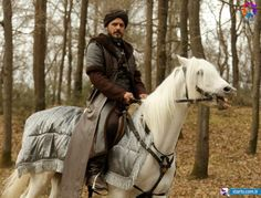 Tv Series, Empire, Ottoman, Horses, Animals, Men, Dresses, Celebs, Vestidos