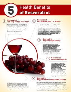Researchers have been studying the potential uses of resveratrol for years…