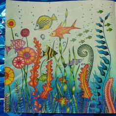 Mais um pra galeria dos #jaerameuazul!  #lindo Vale a pena! Use #colorindolivrostop  #EzRepost @lidianapessoa13 with @ezrepostapp  Primeira página de paisagem dupla. ..amando gastar os azuis. #boracolorirtop #jardimsecretotop #florestaencatadatop #jardimsecretoinspire #colorindolivrostop #jardimsecretoinspire #livrodecolorir #jardimdascores