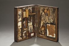 On Tour:  Dorothy Solomon, Curator, New York Natural History Museum, New York