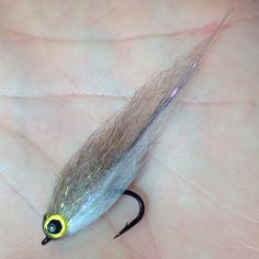 SLD glassie #saltwaterflies