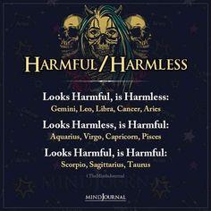 Harmful / Harmless: Looks Harmful, is Harmless: Gemini, Leo, Libra, Cancer, Aries; Looks Harmless, is Harmful: Aquarius, Virgo, Capricorn, Pisces; Looks Harmful, is Harmful: Scorpio, Sagittarius, Taurus #zodiac #astrology #zodiactraits