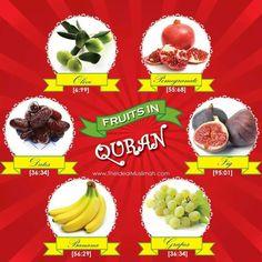 6 fruit in Quran