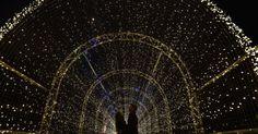 Clima de Natal inspira cidades pelo mondo. Túnel iluminado em Kew Gardens, na zona oeste de Londres. A instalação faz parte da decoração natalina nos jardins botânicos da cidade.  Fotografia: Toby Melville/ Reuters.
