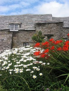 Flowers in the garden of the old post office, Tintagel, Cornwall.