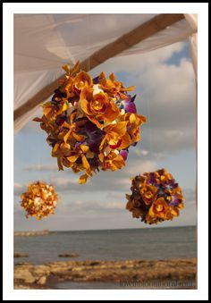 Mixed Orchid Kissing Balls by Love In Bloom Key West, Wedding Flowers