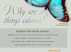 Explore the 3 causes of color: Light is made in the yellow glow of a candle. Light is lost when sunlight filters through stained glass. Light is moved with sky turns crimson sunset.