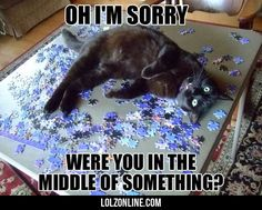 Were You In The Middle Of Something?#funny #lol #lolzonline