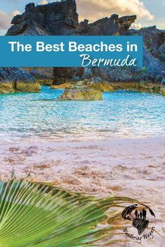 Bermuda has over 30 beaches. The most famous is Horseshoe Bay, known worldwide for its pink sands.