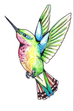 Love to have a hummingbird tat on my shoulder.