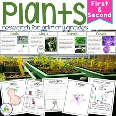 Plant research for primary grades. So many engaging educational activities in one place!