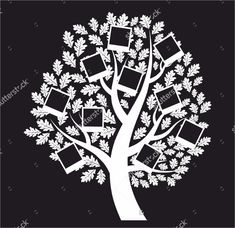 Oak tree Clip Art and Stock Illustrations. Oak tree EPS illustrations and vector clip art graphics available to search from thousands of royalty free stock art creators. Oak Tree Pictures, Tree Images, Blank Family Tree Template, Pedigree Chart, Family Tree Research, Tree Templates, Tree Illustration, Illustrations, Tree Silhouette