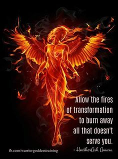 Phoenix Fire Sammi Joy on ArenaXtreme! Phoenix Quotes, Phoenix Images, Phoenix Artwork, Breathing Fire, Motivacional Quotes, Brainy Quotes, Phoenix Tattoo Design, Phoenix Tattoos, Crow Tattoos