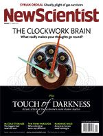 Why your brain may work like a dictionary - life - 29 August 2013 - New Scientist