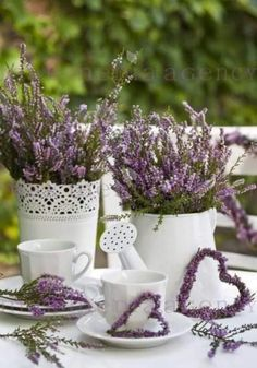 Chickens in my kitchen - flower tub and decoration for garden, terrace, home . Lavender Cottage, French Lavender, Lavender Fields, Lavender Color, Lavender Flowers, Purple Flowers, Growing Lavender, Deco Nature, Centerpieces