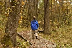 Where to View Fall Foliage in Northeast Ohio: Rocky River Nature Center in North Olmsted
