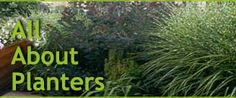Garden Planters & Flower Pots ~ do you know which outdoor planters  are ideal for container gardening