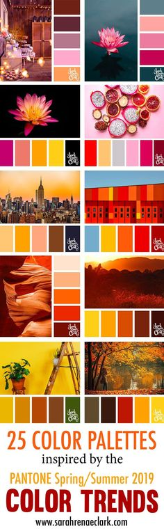 25 Color Palettes Inspired by Pantone Spring/Summer 2019 Color Trends Scheme Color, Color Schemes Colour Palettes, Colour Pallette, Color Trends, Yarn Color Combinations, Coloring Tips, Design Seeds, Colour Board, Pantone Color