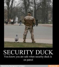 Security duck...now i feel safe