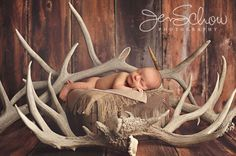 Newborn Hunting