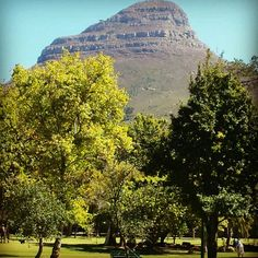 See 108 photos and 12 tips from 425 visitors to De Waal Park. Cape Town, Great Places, Monument Valley, Grand Canyon, Mountains, Park, Travel, Viajes, Parks