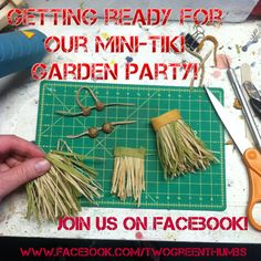 4,984 people can't be wrong. Join us on Facebook! Let's start the Mini Tiki Garden Party!! http://www.Facebook.com/TwoGreenThumbs