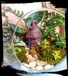 Perfect size for hanging globe gardens ! Check out this item in my Etsy shop https://www.etsy.com/listing/288932333/rustic-fairy-garden-house-spirit-house