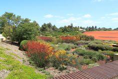 Cranbourne Botanical Gardens