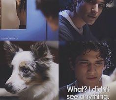 Season 1 of teen wolf
