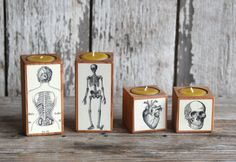 A beeswax candle with a vintage medical illustration. | 27 Infectiously Cool Gifts For Medical Nerds