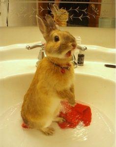 Can i bath alone pleease?