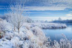 Seasons - 2nd - Winter morning at Water's Edge by Lee Beel