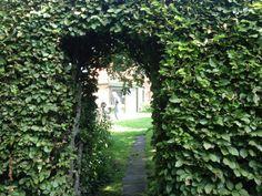 Den grønne port fra Helles have til Flemminga have
