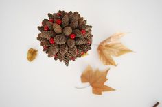 Volvemos a decorar con piñas esta navidad. Tutorial de árbol de piñas como centro de mesa.  Pinecones little tree. DIY for this Christmas.