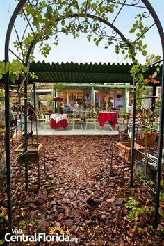 The Tea Room Lakeland Florida