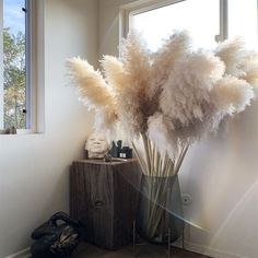 From accent pieces to floral arrangements, here's how to get the pampas grass trend at home. Grass Decor, Deco Originale, Home Decor Inspiration, Decor Ideas, Home Decor Trends, Home Goods Decor, Dried Flowers, Boho Flowers, Arches