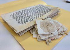 15 Ablassbriefe im Stadtarchiv Baden gefunden