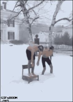 GIFsBOOM is your source for the best GIFs online. Find everything from funny GIFs, unique GIFs and more. Funny Snow Pictures, Cat Attack, Gifs, Trivia Quiz, Animated Gif, Funny Cats, Best Friends, Have Fun, Cute Animals