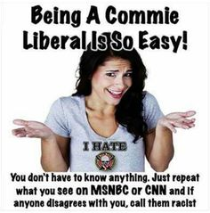 Yep...they just love to call conservatives offensive names with no foundation.  That's their comebacks. Politicians, Liberal Hypocrisy, Socialism, Liberal Logic, Liberals Are Idiots, Communism, Tulle Wedding, Wedding Dresses, Conservative Values
