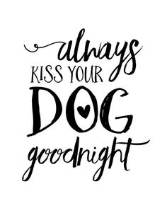 Always Kiss Your Dog Goodnight - Always Kiss Your Dog Goodnight Print Printed on photo paper Great for dog lovers! I Love Dogs, Cute Dogs, Mom Quotes, Puppy Love Quotes, Quotes For Dogs, Life Quotes, Dog Signs, Kiss You, Animal Quotes