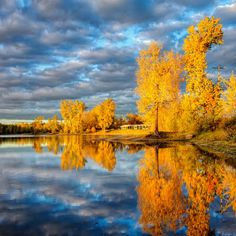 I think the aspens here in Colorado are beautiful subjects to shoot, and I know of a lake where I might be able to get a shot like this some day.