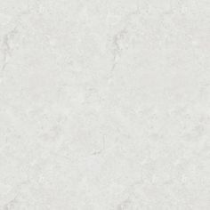 A pale soft grey white marble with natural mid grey veins throughout.