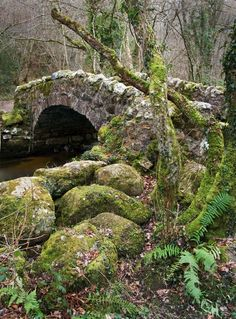 Hisley Bridge spanning the River Bovey in Hisley Wood, Dartmoor, Devon, England…
