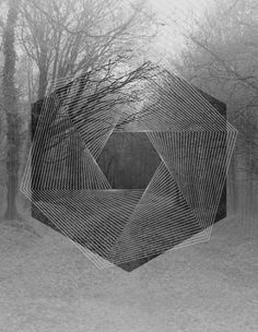 geometric layer on forest