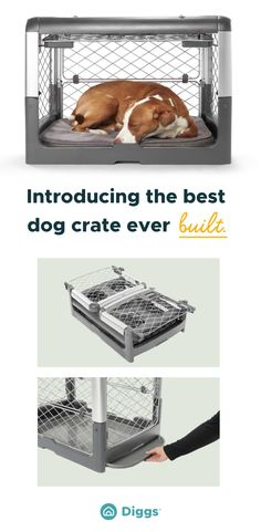 The Revol dog crate is everyone's new best friend. See what all the barking is about and learn more about our patent-pending, collapsible and safe crate. Dog Crate Pads, Dog Pads, Crate Furniture, Furniture Design, Collapsible Dog Crate, Crate Bed, Crate Training, Animal Birthday, Patent Pending
