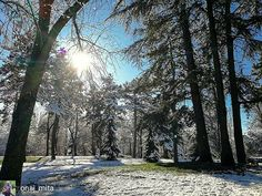 Inside a fortress in Niš there is frozen Kingdom. More about city of Niš on http://ift.tt/2n9RQrn #wheretoserbia #instagramsrbija #slikeizsrbije #mycity_rural_life #total_rural #total_nature #mountains #landscape #love_nature #landscape_love #nature_love #landscape_colection #myserbia #naturelovers #nature_sultans #priroda #travelinserbia #Природа #небо #nis #visitnis #serbia #srbija #tvrdjava #tvrdjavanis #kej #nisavskikej #gradnis #gradniš @wizzaircom @ryanair