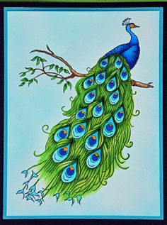 Stampendous image colored by Jennie Black with Copics Spectrum Noir alcohol pens Peacock Nail Art, Peacock Crafts, Peacock Drawing, Peacock Painting, Border Embroidery Designs, Hand Embroidery Patterns, Art Drawings For Kids, Animal Drawings, Bird Coloring Pages