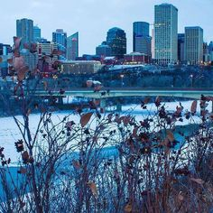 Edmonton, AB, Canada in winter