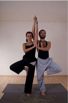 A partner yoga tree.